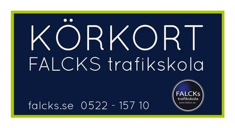Svarteborgs FK - SFK Fotbollsskola ccd015fe2d067